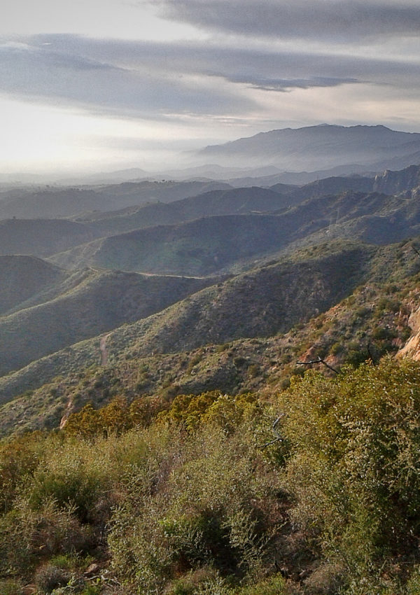 HIKING ADVENTURES IN L.A.