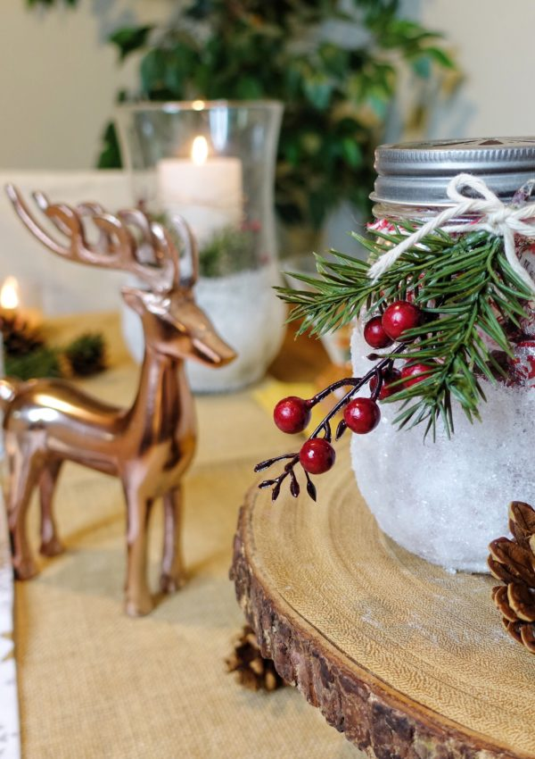 EASY CHRISTMAS DIY – CENTERPIECE AND COCKTAILS!!!