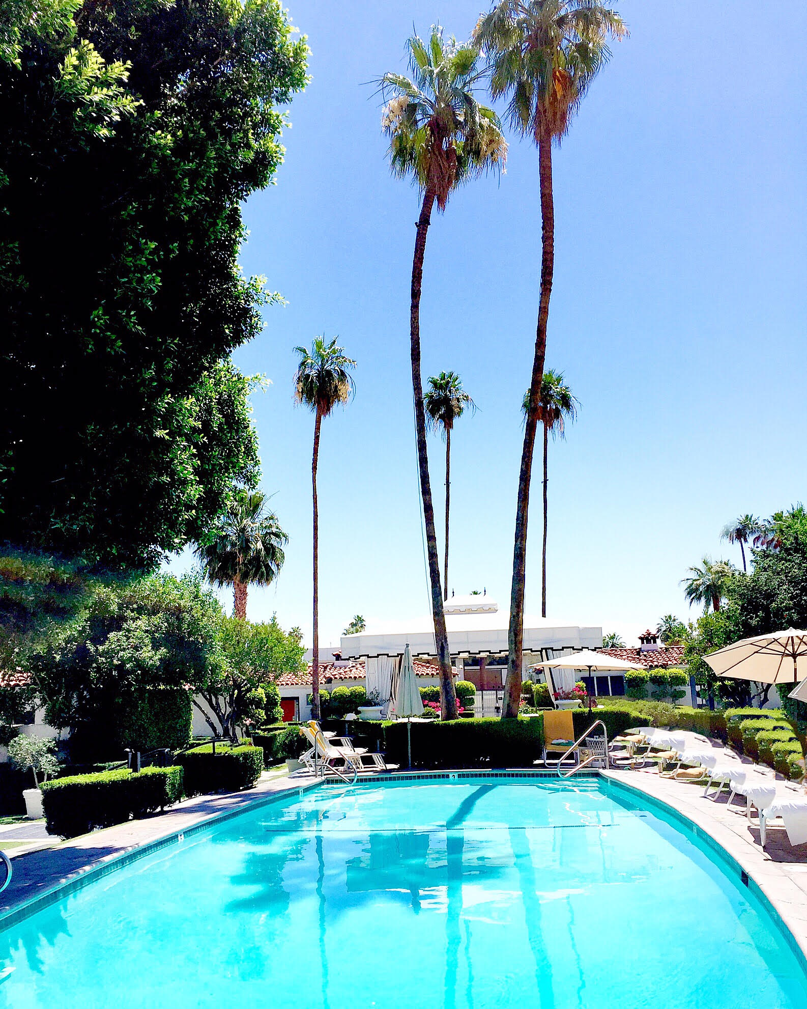 TRAVEL GUIDE: PALM SPRINGS, CA